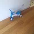 Selling: ChillaFish Baby/Toddler Trike